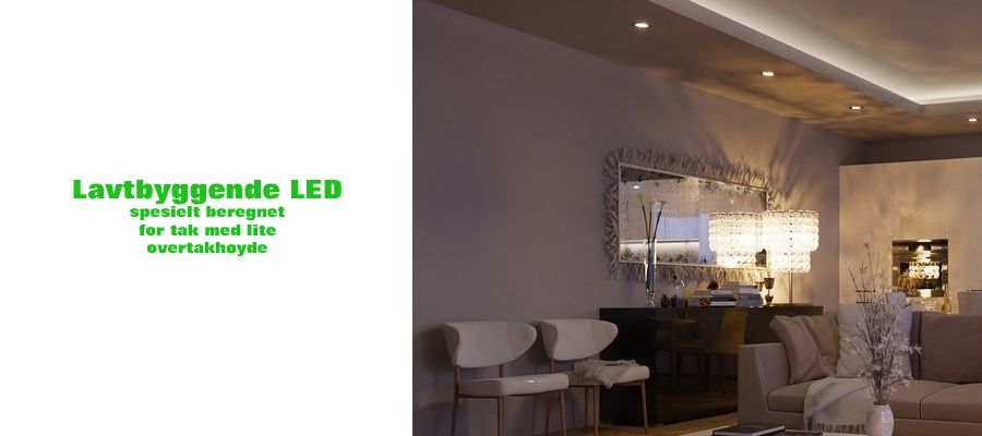 LED Downlight Lavtbyggende