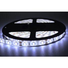 5050 Kald hvit LED stripe IP65